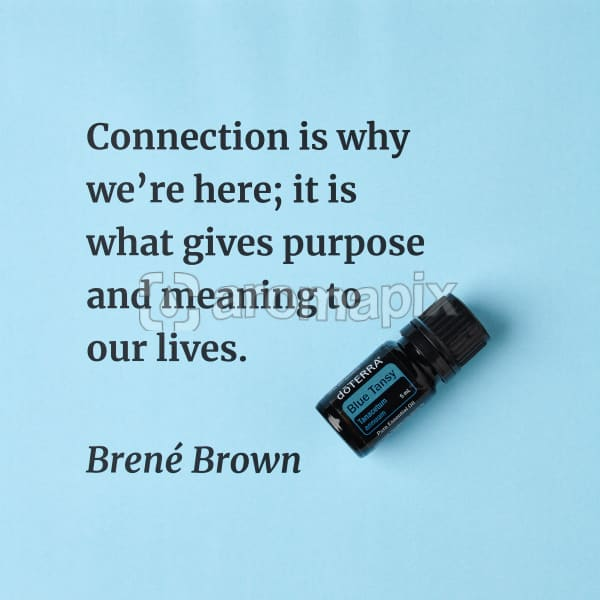 Connection is why we're here; it is what gives purpose and meaning to our lives – inspiration quote about doTERRA Blue Tansy printed on a pale blue background.
