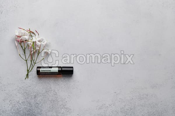 doTERRA Jasmine Touch with jasmine flowers on a white concrete background.