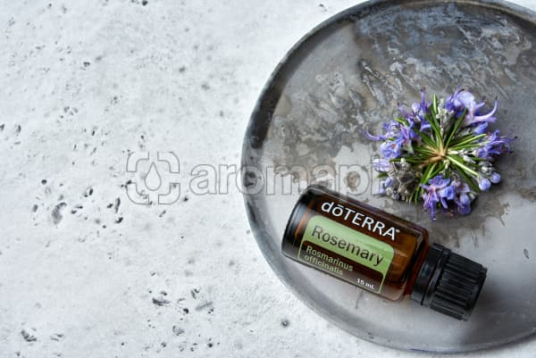 doTERRA Rosemary with rosemary flowers on a rustic ceramic plate on a white concrete background.