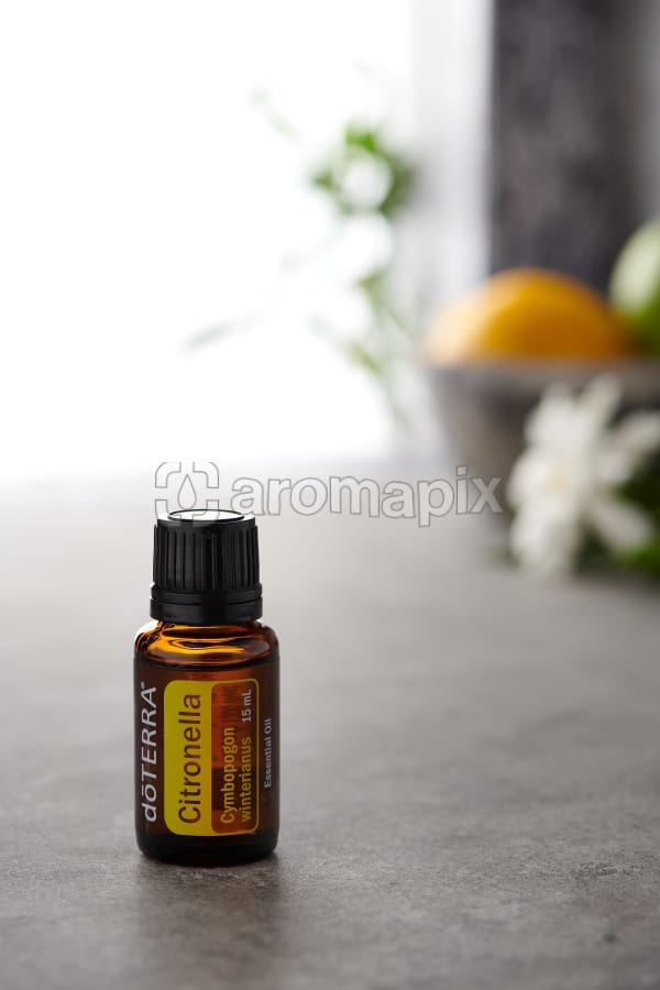 doTERRA Citronella on a bench in a rustic setting near a window.