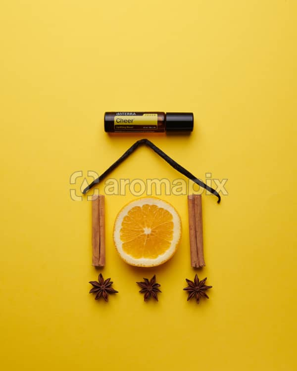 doTERRA Cheer Touch with a vanilla bean, orange slice, cinnamon sticks and star anise in a house shape on a yellow card stock background.