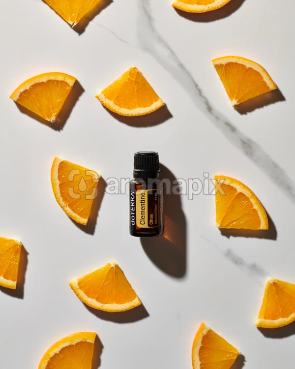 doTERRA Clementine essential oil and citrus slices scattered on a white marble background.