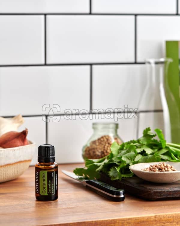 doTERRA Coriander on a kitchen bench with fresh cilantro/coriander and coriander seeds.