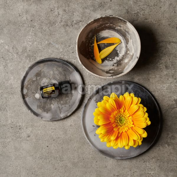 doTERRA Hellichrysum on a ceramic plate, a yellow flower on a ceramic plate and petals in a small ceramic bowl on a grey stone background.