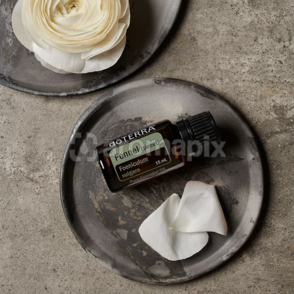doTERRA Fennel essential oil and flower petals on a ceramic plate and part of a white flower on a ceramic plate on a grey stone background.
