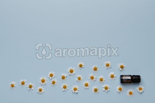 doTERRA Roman Chamomile with scattered chamomile flowers on a light blue card stock background.