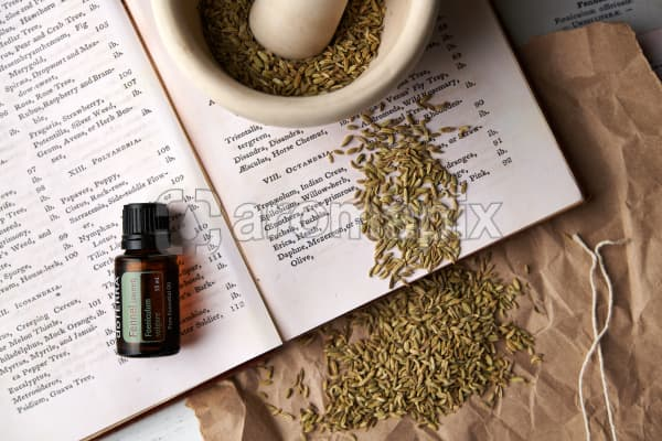 doTERRA Fennel on a vintage botany book with dried fennel seeds in a mortar and pestle and vintage fennel  illustrations.