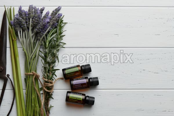 doTERRA Rosemary, Lavender and Lemongrass  with lavender stems, rosemary flowers, lemongrass stalks and vintage scissors on a white wooden background.
