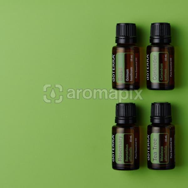doTERRA Basil, Coriander, Rosemary and Tea Tree oils on green background.