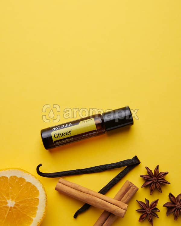 doTERRA Cheer Touch with a vanilla bean, orange slice, cinnamon sticks and star anise on a yellow card stock background.