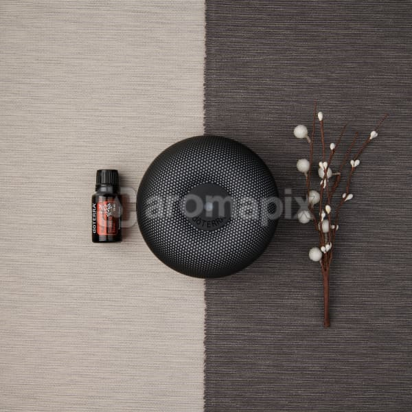doTERRA Holiday Joy and Brevi Walnut Diffuser with a holiday decoration on a dark and light gray textured background.