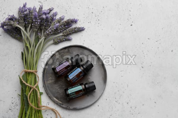 doTERRA Lavender, Peppermint and Spearmint  on a ceramic plate with lavender stems tied with twine on a white concrete background.