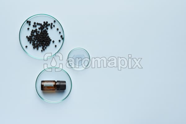 doTERRA Black Pepper in a petrie dish with black peppercorns and oil in petrie dishes on a pale blue background.