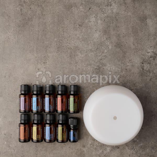 doTERRA Home Essentials Enrolment KIt on a gray stone background.