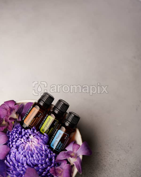 doTERRA Frankincense, Bergamot and Ylang Ylang in a bowl of purple flowers on a pale gray background.