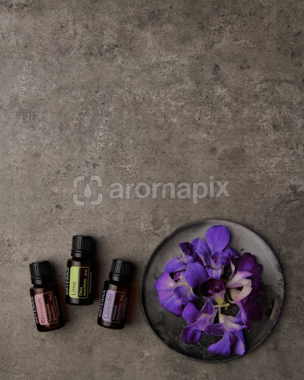 doTERRA Geranium, Lime and Lavender with purple flowers on a ceramic plate on a gray stone background.