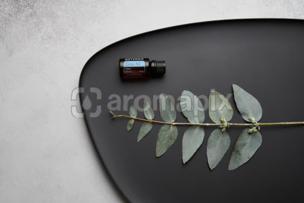 doTERRA Easy Air and eucalyptus leaves on black melamine plate with white concrete background.