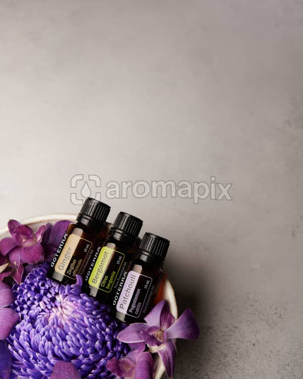 doTERRA Ginger, Bergamot and Patchouli in a bowl of purple flowers on a pale gray background.