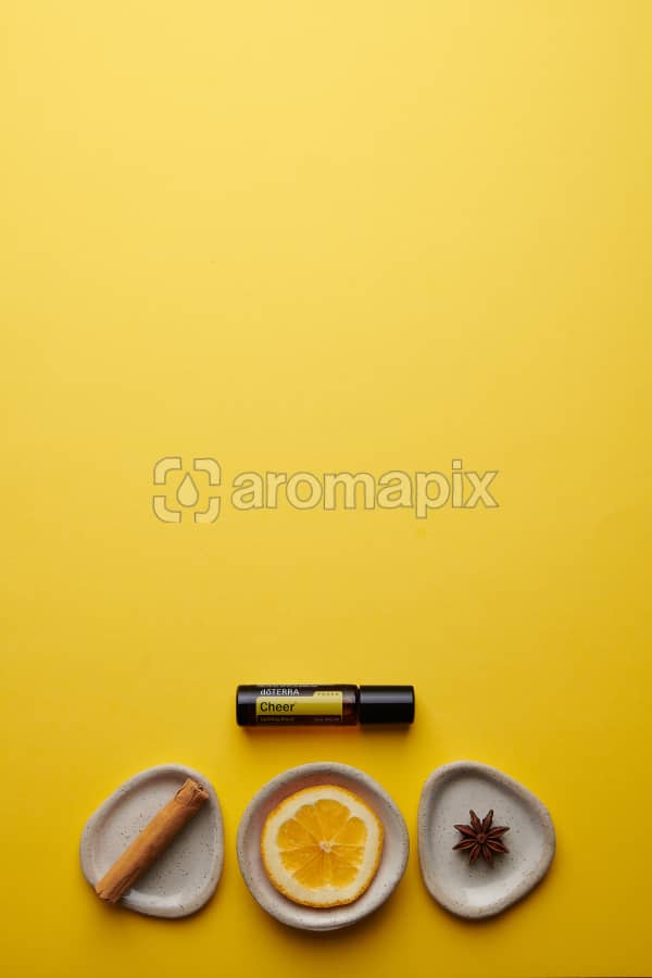doTERRA Cheer Touch with a cinnamon stick, orange slice and star anise in individual ceramic dishes on a yellow card stock background.