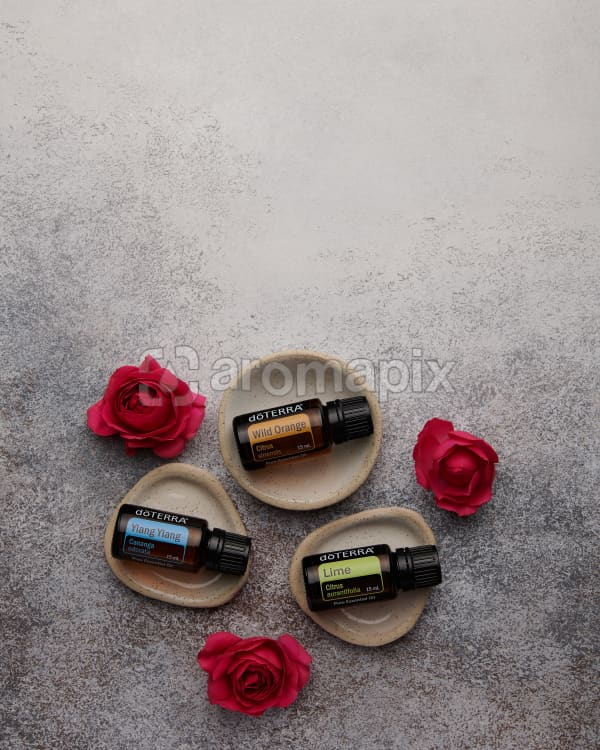 doTERRA Ylang Ylang, Wild Orange and Lime in separate tiny stone dishes with red roses on a white concrete background.