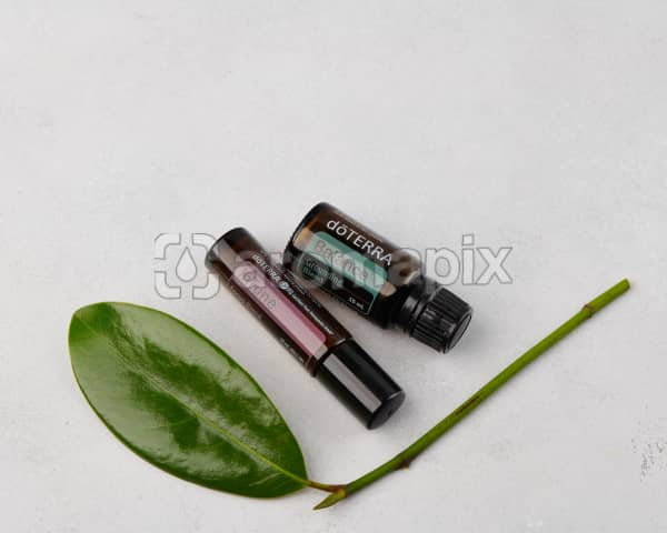 doTERRA InTune 10ml and doTERRA Balance 15ml with a leaf on concrete.