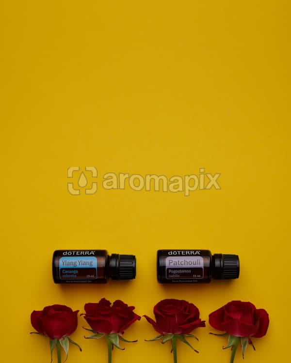 doTERRA Ylang Ylang and Patchouli with red roses on a yellow card background.