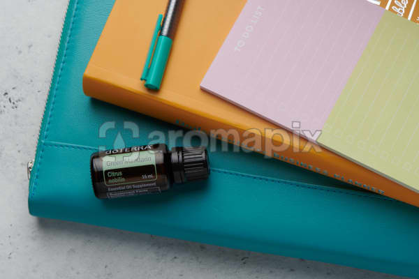 doTERRA Green Mandarin oil with business folder, planner, pen and to do list on white concrete background.