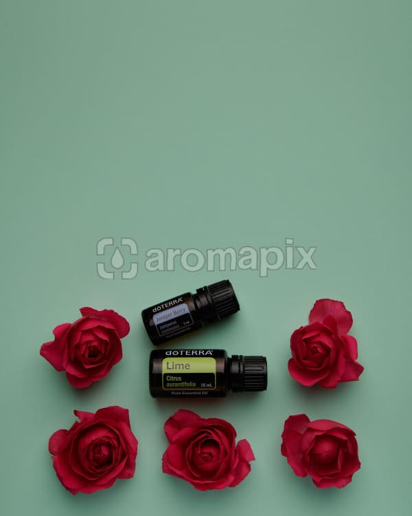 doTERRA Lime and Juniper Berry with red roses on a green card background.