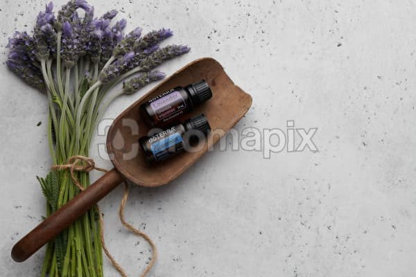 doTERRA Lavender and Peppermint in a wooden scoop with lavender stems tied with twine on a white concrete background.