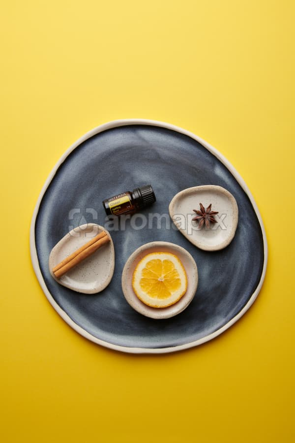 doTERRA Cheer with a cinnamon stick, orange slice and star anise in individual ceramic dishes on a blue ceramic plate on a yellow card stock background.