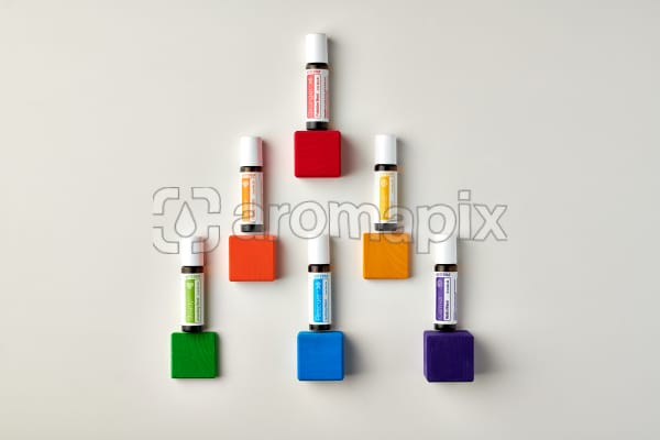 doTERRA Kids Oil Collection individual oils on colored wooden blocks.