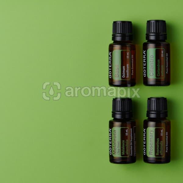 doTERRA Basil, Coriander, Melaleuca and Rosemary oils on green background.