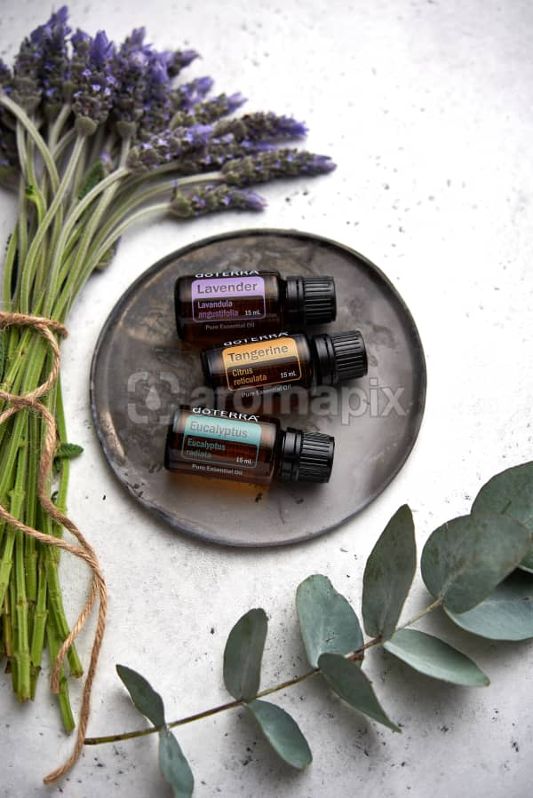 doTERRA Lavender, Tangerine and Eucalyptus  on a ceramic plate with lavender and eucalyptus stems on a white concrete background