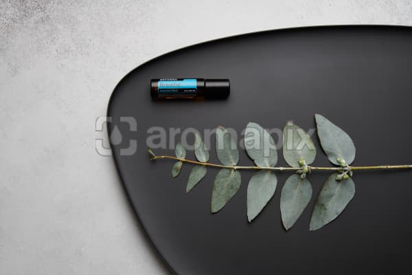 doTERRA Breathe Touch and eucalyptus leaves on black melamine plate with white concrete background.