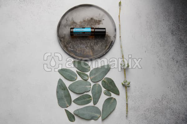 doTERRA Breathe Touch on distressed ceramic plate with eucalyptus leaves on white concrete background.