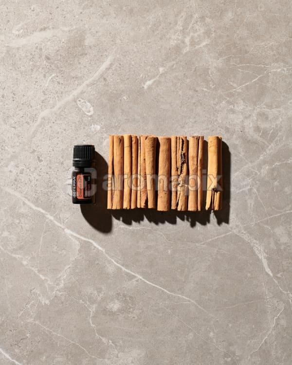 doTERRA Cinnamon Bark essential oil and cinnamon sticks on a grey tile in the sun.