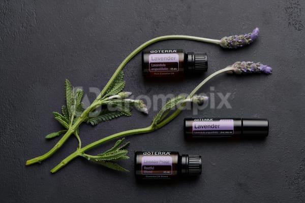 doTERRA Lavender, Lavender Touch, Lavender Peace and lavender stems on black concrete  background.