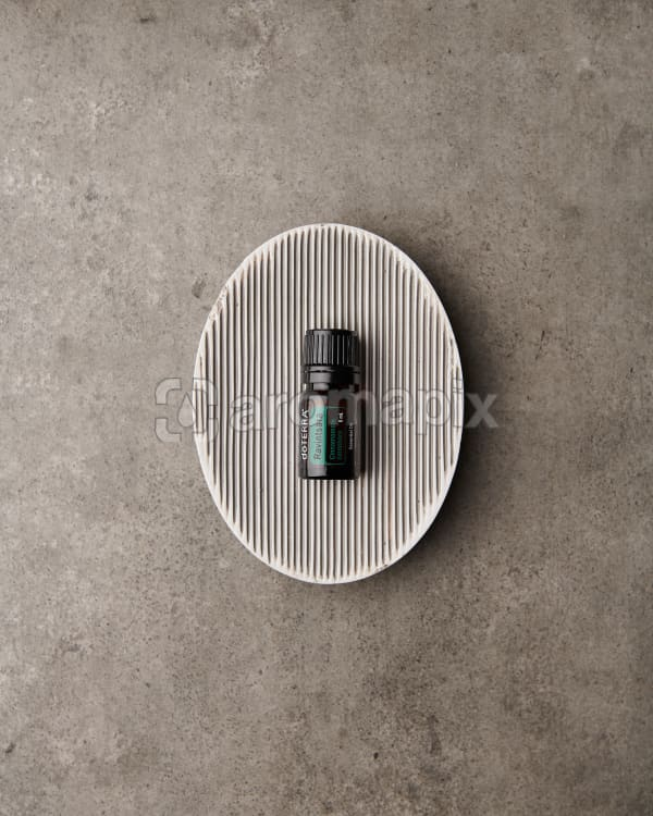 doTERRA Ravintsara in a soap dish on a gray stone background.