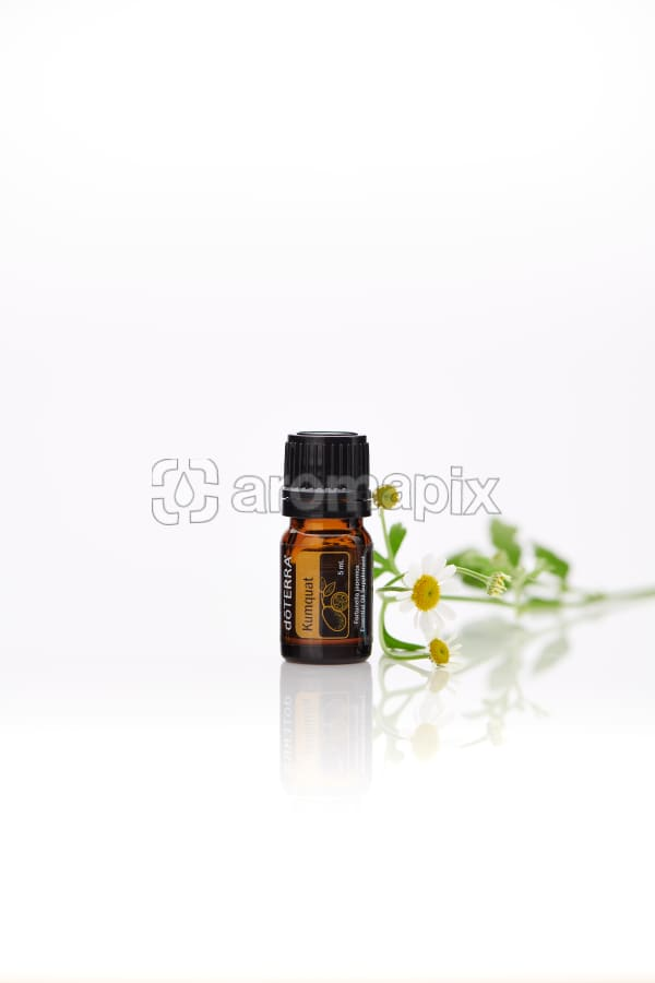 doTERRA Kumquat with flowers on a white background with reflection.
