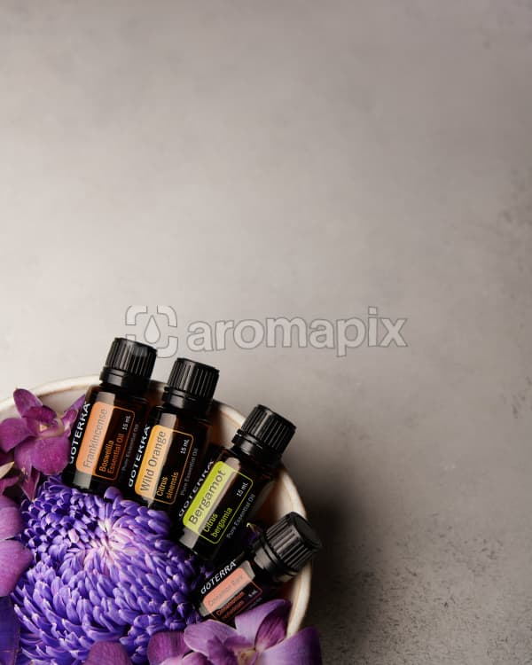 doTERRA Frankincense, Wild Orange, Bergamot and Cinnamon Bark in a bowl of purple flowers on a pale gray background.