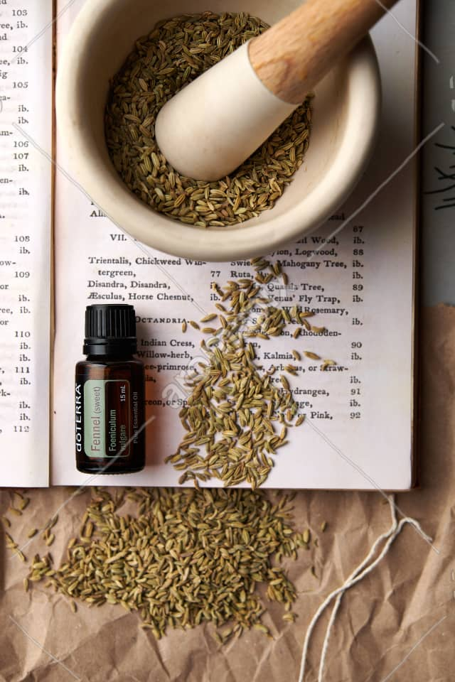 doTERRA Fennel with dried fennel seeds  in a mortar and pestle