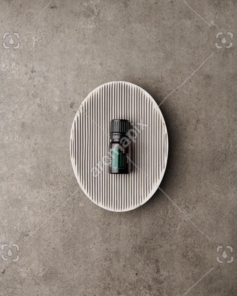 doTERRA Ravintsara in a soap dish on gray