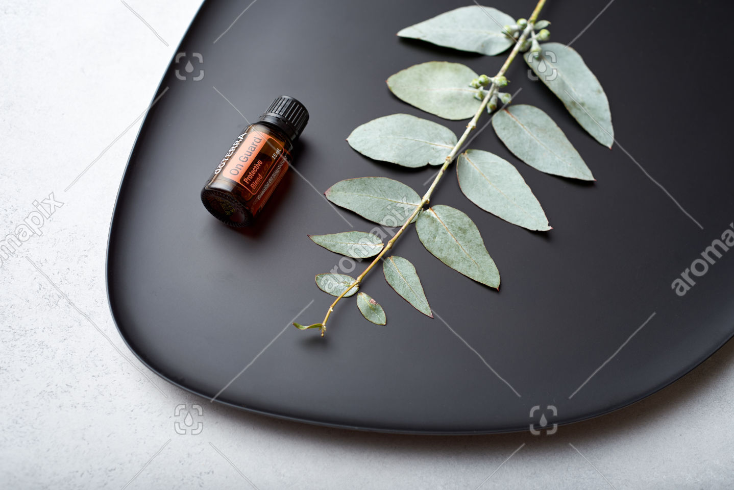 doTERRA On Guard and eucalyptus leaves on black plate