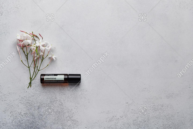 doTERRA Jasmine Touch with jasmine flowers on white