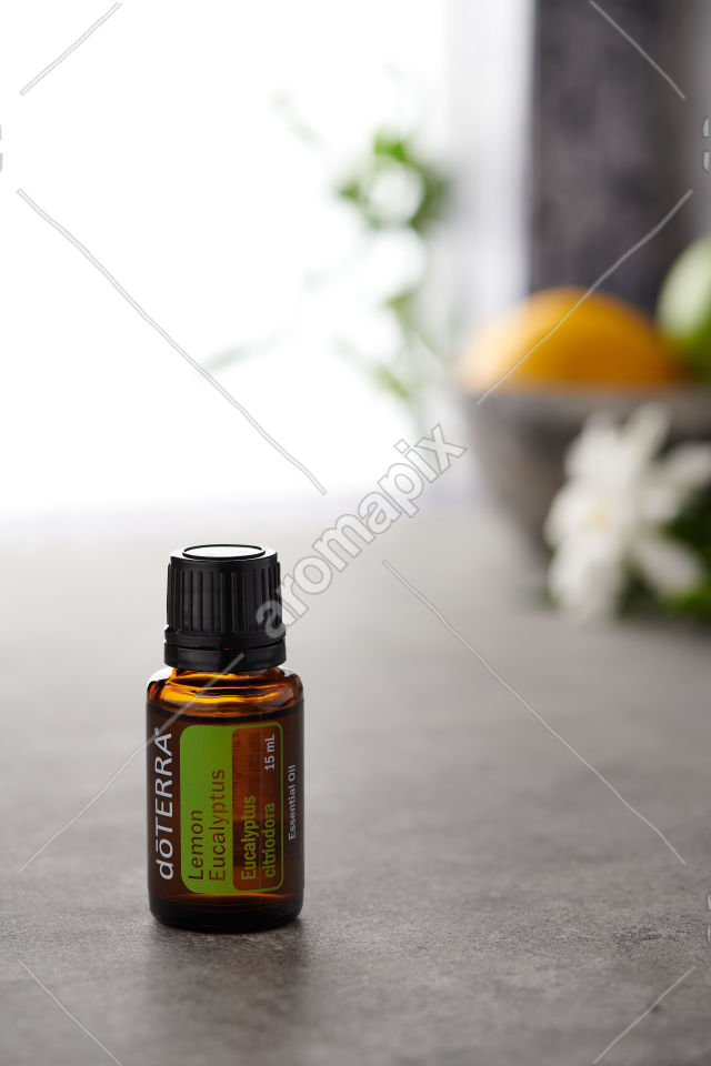 doTERRA Lemon Eucalyptus on a bench