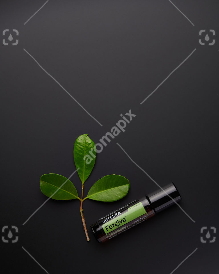 doTERRA Forgive Touch with leaves on black