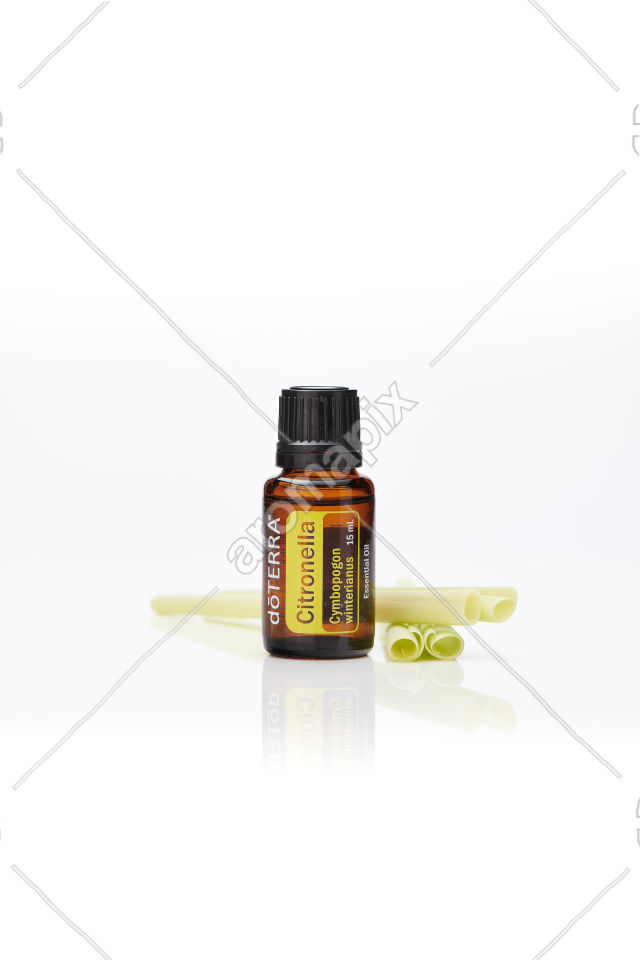 doTERRA Citronella with citronella on white