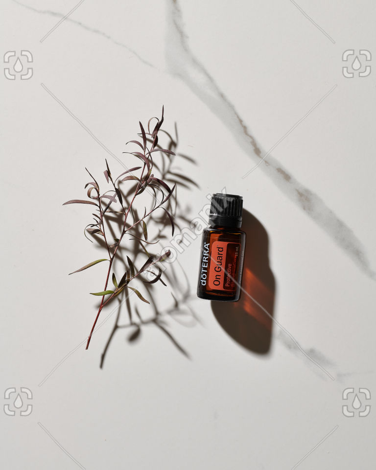 doTERRA On Guard essential oil and plant stem in sunlight