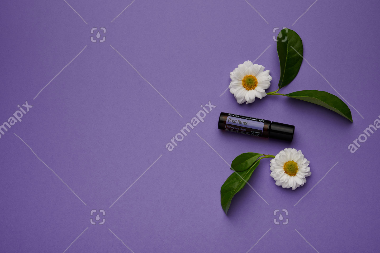 doTERRA PastTense with flowers and leaves on purple