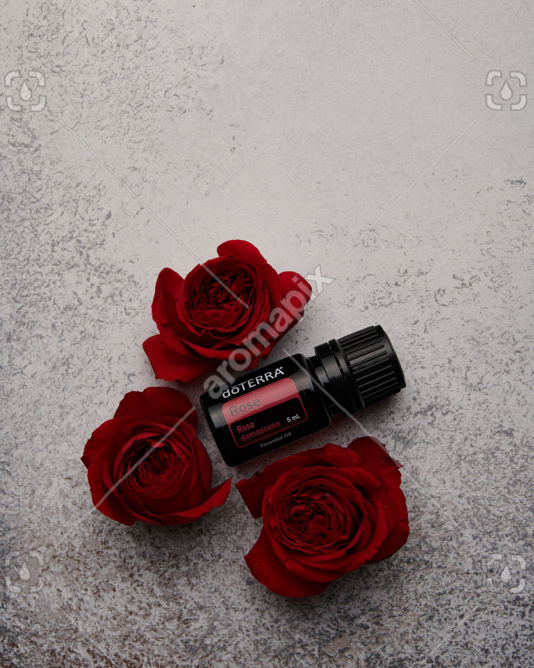 doTERRA Rose with red roses on white